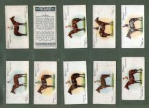 Collectible Cigarette cards set Grand national Winners Horse racing